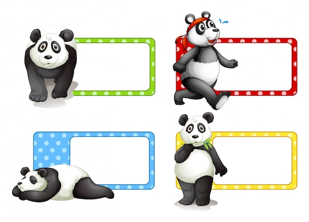 Conception d'étiquettes avec illustration de pandas