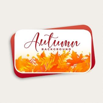 Conception de fond automne avec des feuilles d'automne