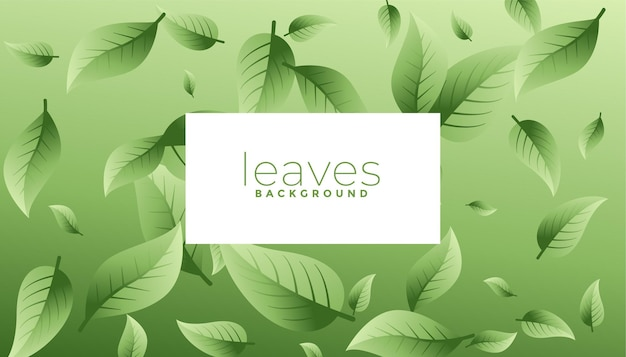 Conception de fond éco feuilles vertes