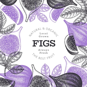 Conception de fruits figues dessinés à la main