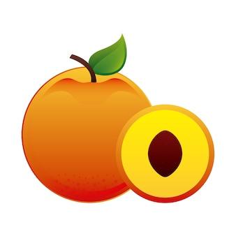 Conception de fruits sur fond blanc illustration vectorielle