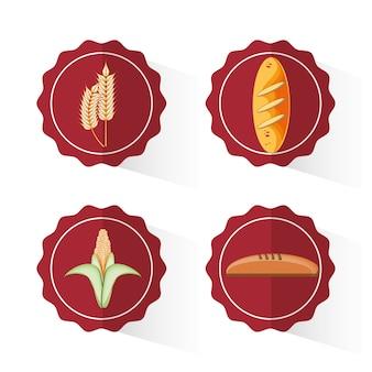 Conception de grains entiers produits alimentaires vector illustration