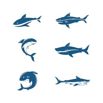 Conception d'icône d'illustration de requin