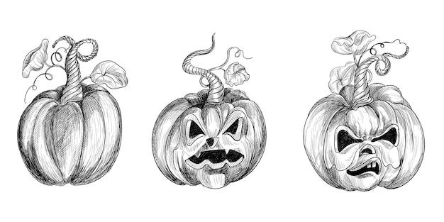 Conception de jeu de croquis drôle de citrouilles d'halloween dessinés à la main