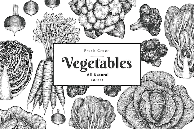 Conception de légumes croquis dessinés à la main. fond végétal vintage. illustrations botaniques de style gravé.