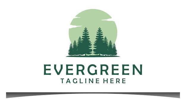 Conception de logo d'arbres de cèdre d'épinette de pins à feuilles persistantes