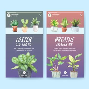 Conception de modèle d'histoire instagram avec des plantes d'été et des plantes d'intérieur pour les médias sociaux