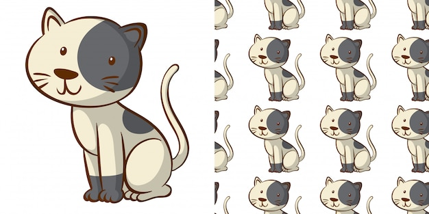 Conception avec motif transparent chaton mignon