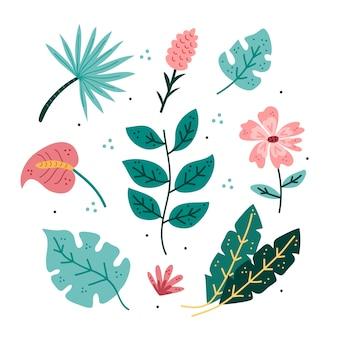 Conception de pack de feuilles et fleurs tropicales