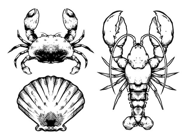 Conception de pack de fruits de mer noir et blanc