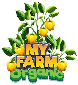 Conception de polices pour word my farm avec des poivrons jaunes