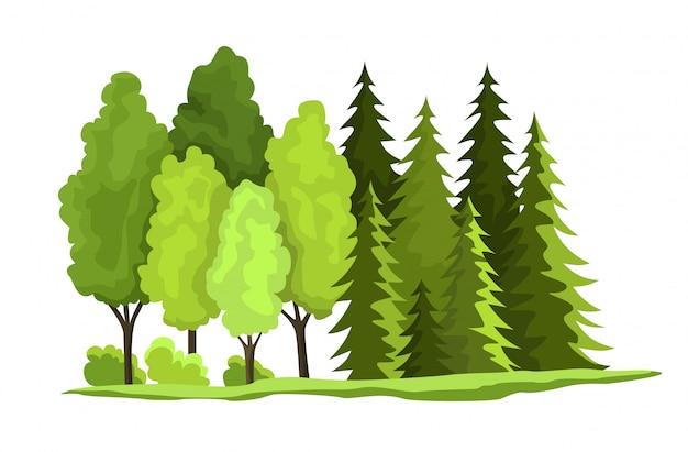 Conception des ressources naturelles. illustration vectorielle de trésor national en bois. illustration d'une ressource renouvelable