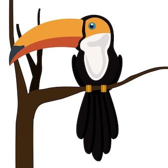 Conception toucan