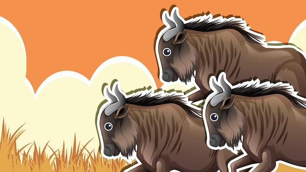 Conception de vignette avec groupe de yak