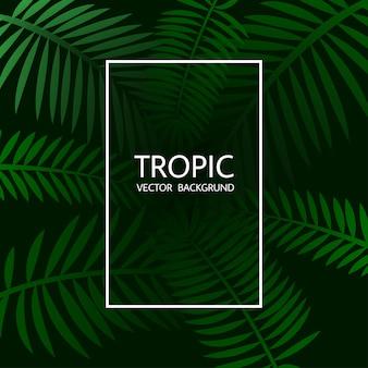 Concevoir avec des feuilles de palmier tropical exotiques et lettrage.