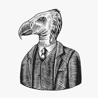 Condor gentleman isolé sur blanc