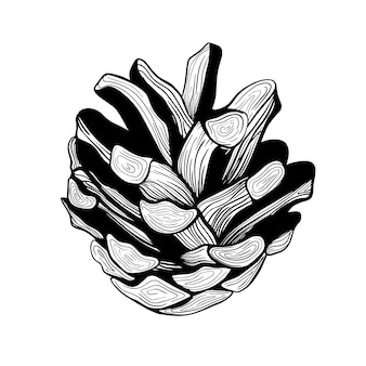 Cône de pin. décoration d'arbre de noël. une pomme de pin. illustration vectorielle botanique dessinés à la main. éléments de conception pour les invitations, décor de vacances, cartes de voeux, estampes, impression. décorations de noël