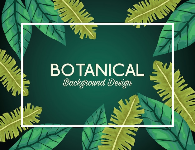 Contexte botanique