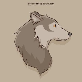 Contexte de dessin de loup