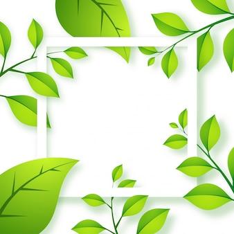 Contexte écologique avec des feuilles vertes.