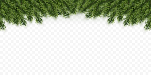 Contexte festif de noël ou du nouvel an. branches d'arbres de noël. contexte de vacances.