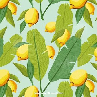 Contexte des feuilles de palmier et des citrons