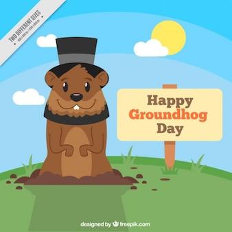 Contexte de la marmotte avec un chapeau sur une journée ensoleillée