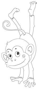Contour animal pour singe