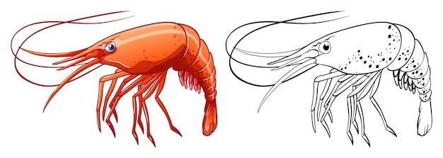 Contour des animaux pour les crevettes