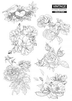 Contour floral à colorier des collections vintage