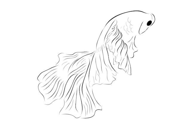 Contour simple vecteur betta ou poisson de combat siamois demi-lune géante sur fond blanc