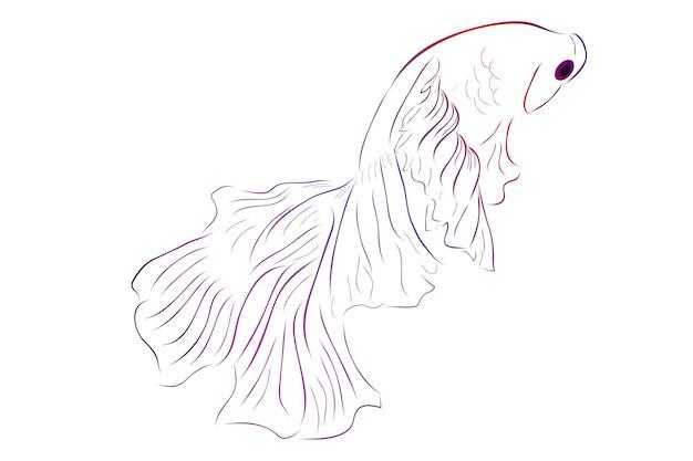 Contour vectoriel betta ou poisson de combat siamois demi-lune géante sur fond blanc