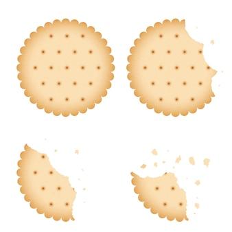 Cookie de biscuit mordu de puce, ensemble de vecteurs de cracker