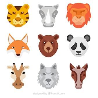 Cool ensemble de visages d'animaux plats