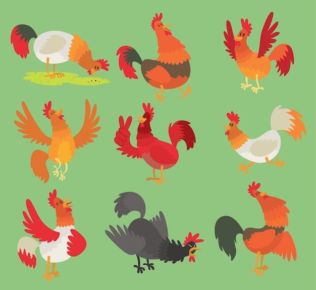 Coq coq poulet dessin animé personnage illustration coq isolé sur fond