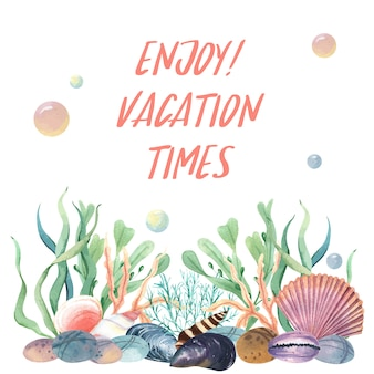 Coquillage, vie marine, été, voyager, plage
