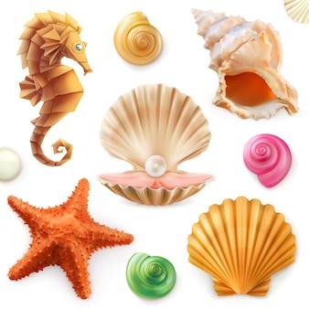 Coquille, escargot, mollusque, étoile de mer, hippocampe. ensemble 3d
