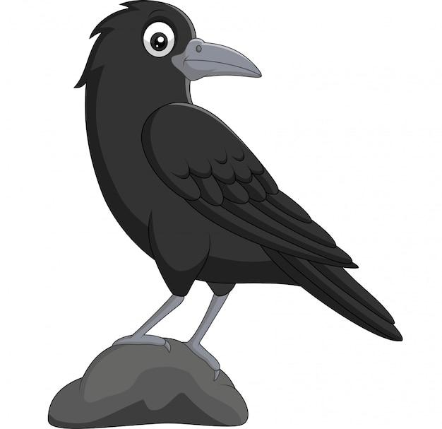 Corbeau de dessin animé debout dans la pierre sur blanc