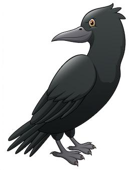 Corbeau de dessin animé isolé
