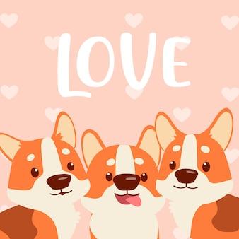 Corgi t'aime