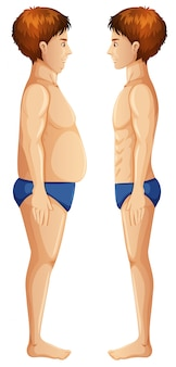 Corps humain fat et slim