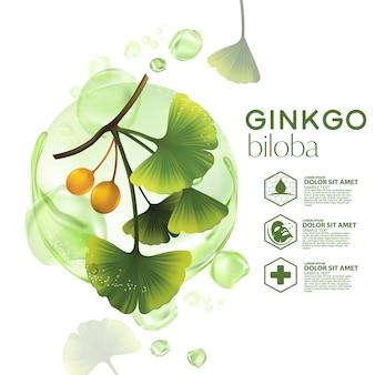Cosmétique d'illustration réaliste avec des ingrédients cosmétique de soins de la peau ginkgo biloba