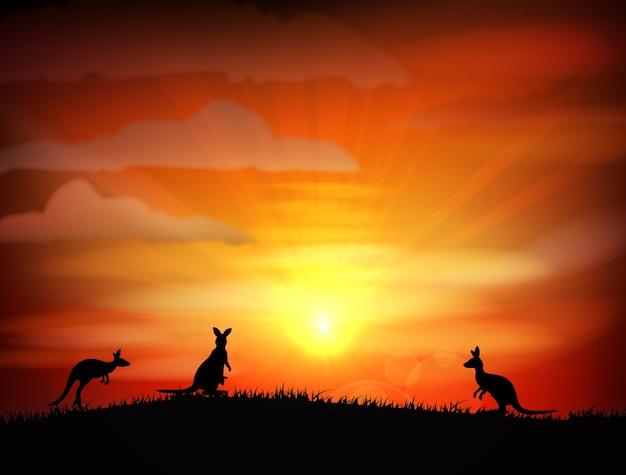 Coucher de soleil sur les champs