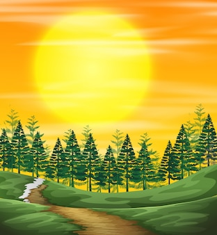 Coucher de soleil sur la nature