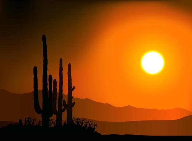 Coucher de soleil silhouette cactus et montagnes
