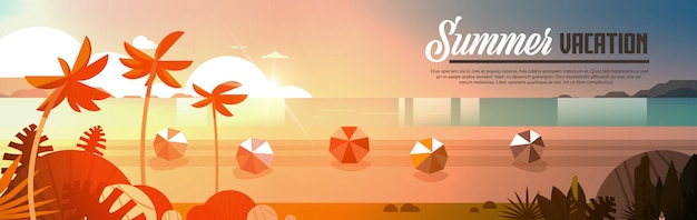 Coucher de soleil tropical palm boules de plage vue vacances d'été bord de mer mer océan