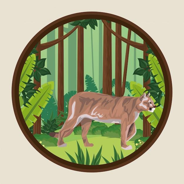 Cougar sauvage dans la scène de la jungle