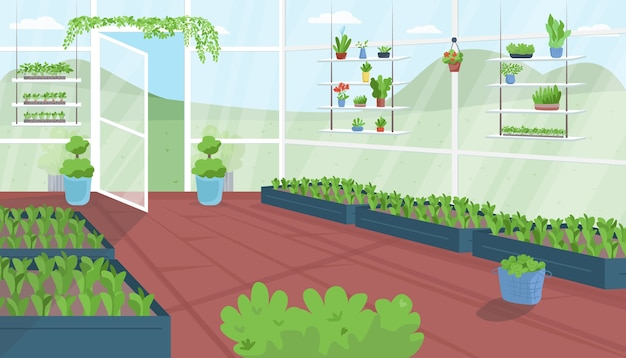 Couleur plate de serre. culture de légumes. jardin urbain. structure pour l'horticulture. maison de plantation. intérieur de dessin animé 2d installation agricole avec paysage sur fond