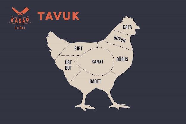 Coupes de viande. affiche du diagramme de boucher - tavuk