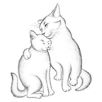 Couple d'amoureux des chats.